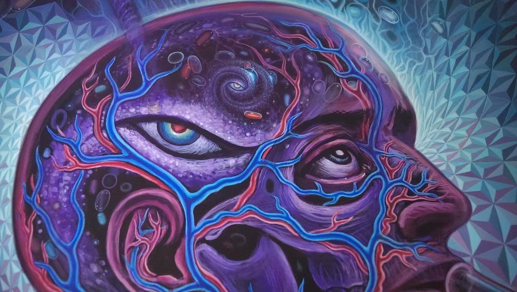 DMT : La molécule de l'esprit